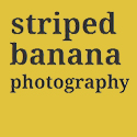 Striped Banana Photography